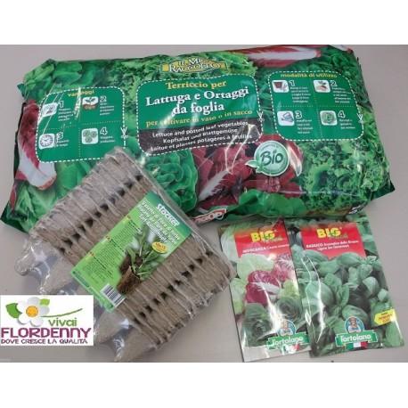 KIT SEMENZAIO INSALATE E RADICCHI PIANTINE piante semina seme orto fiori