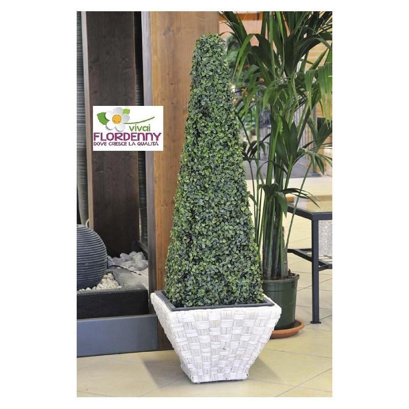 Verdemax piramide di bosso artificiale h60 art5716 for Bosso vaso