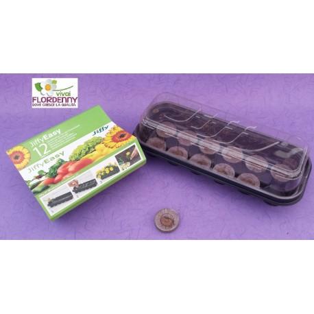 BLUMEN JIFFY EASY 50 POTS contenitore biodegradabile semina semi talee taleaggio orto
