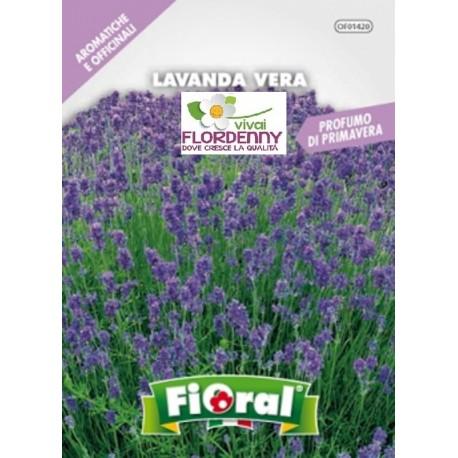FIORAL SEMI DI FIORI DI IMPATIENS IN MIX fiori sementi giardino aiuola piante