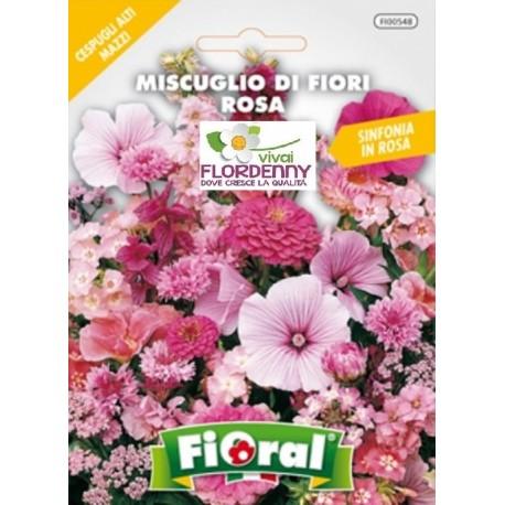 Fioral semi di fiori rosa mix fiori sementi giardino for Vendita semi fiori