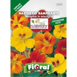 FIORAL SEMI DI FIORI DA RECIDERE IN MIX fiori sementi giardino aiuola piante