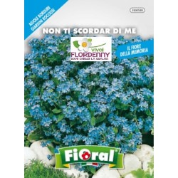 FIORAL SEMI DI NON TI SCORDAR DI ME fiori sementi giardino aiuola piante