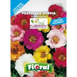 FIORAL SEMI DI PISELLO ODOROSO RAMP. MIX fiori sementi giardino aiuola piante