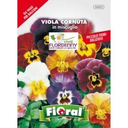 FIORAL SEMI DI VERBENA MIX fiori sementi giardino aiuola piante