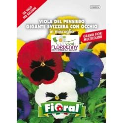 FIORAL SEMI DI VIOLA CORNUTA IN MIX fiori sementi giardino aiuola piante