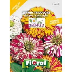 FIORAL SEMI DI ZINNIA LILLIPUT DOPPIA MIX fiori sementi giardino aiuola piante