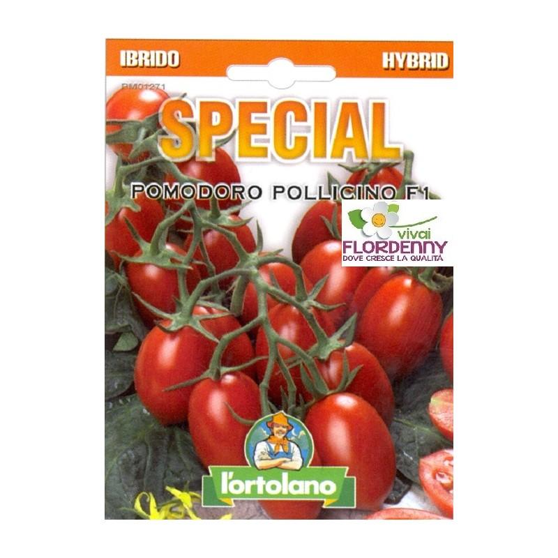 Special semi di pomodoro pollicino f1 orto sementi for Piantine orto prezzi