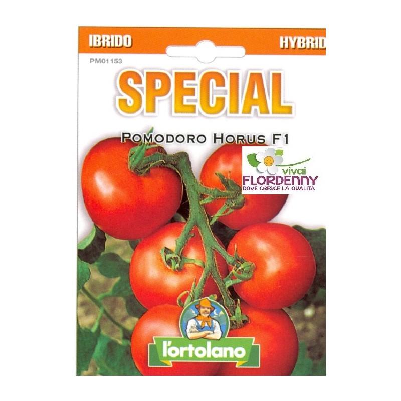 Special semi di pomodoro grappolo horus f1 orto sementi for Piantine orto prezzi