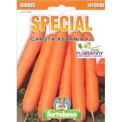 SPECIAL SEMI DI CAROTA ASCANIA F1 orto sementi piantine gardino conserva
