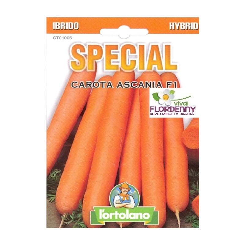 Special semi di carota ascania f1 orto sementi piantine for Piantine orto prezzi