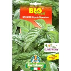 BIG PACK BASILICO LIGURE SEMI L'ORTOLANO orto sementi seme ortolano ortaggio