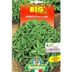 BIG PACK BASILICO GIGANTE NAPOLETANO SEMI L'ORTOLANO orto sementi seme ortolano ortaggio