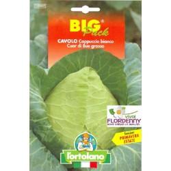 BIG PACK CAROTA NANTESE DI CHIOGGIA 2 SEMI L'ORTOLANO orto sementi seme ortolano ortaggio