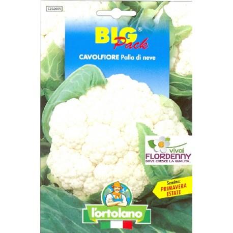 BIG PACK CAVOLO VERDE DI MACERATA SEMI L'ORTOLANO orto sementi seme ortolano ortaggio