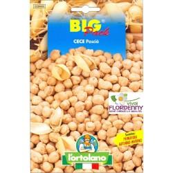 BIG PACK CAVOLO VERZA VIOLACEO SEMI L'ORTOLANO orto sementi seme ortolano ortaggio
