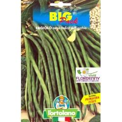 BIG PACK FAGIOLO NANO ANELLINO DI TRENTO SEMI L'ORTOLANO orto sementi seme ortolano ortaggio