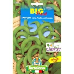 BIG PACK FAGIOLINO NANO BERGGOLD SEMI L'ORTOLANO orto sementi seme ortolano ortaggio