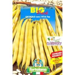 BIG PACK FAGIOLINO NANO TOP CROP SEMI L'ORTOLANO orto sementi seme ortolano ortaggio