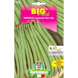 BIG PACK FAGIOLINO RAMPICANTE BLU LAKE SEMI L'ORTOLANO orto sementi seme ortolano ortaggio