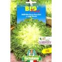 BIG PACK INDIVIA RICCIA SEMI L'ORTOLANO orto sementi seme ortolano ortaggio