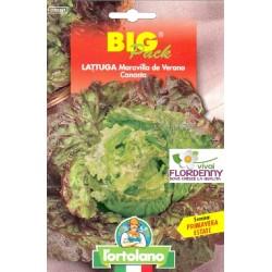 BIG PACK LATTUGA BIONDA FOGLIA LISCIA SEMI L'ORTOLANO orto sementi seme ortolano ortaggio