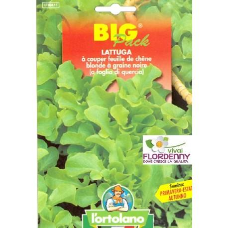 BIG PACK LATTUGA GENTILINA VERDE SEMI L'ORTOLANO orto sementi seme ortolano ortaggio