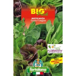 BIG PACK LATTUGHINI MISTICANZA SEMI L'ORTOLANO orto sementi seme ortolano ortaggio