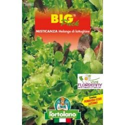 BIG PACK MISTICANZA 4 STAGIONI SEMI L'ORTOLANO orto sementi seme ortolano ortaggio