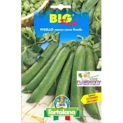 BIG PACK PEPERONE QUADRATO ROSSO SEMI L'ORTOLANO orto sementi seme ortolano ortaggio