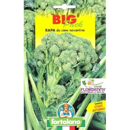 BIG PACK CIME DI RAPA SESSANTINA SEMI L'ORTOLANO orto sementi seme ortolano ortaggio