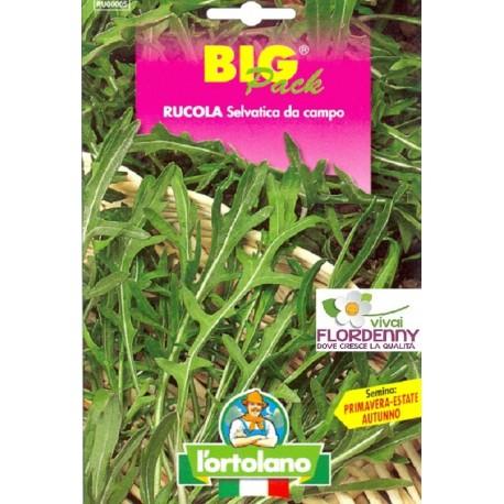 BIG PACK RAVANELLO TONDO SAXA SEMI L'ORTOLANO orto sementi seme ortolano ortaggio