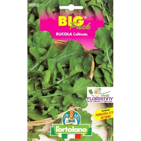BIG PACK RUCOLA SELVATICA SEMI L'ORTOLANO orto sementi seme ortolano ortaggio