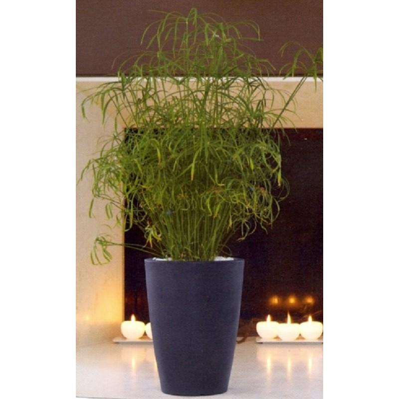 Nicoli vaso tylus 30 vasi resina vaso arredamento giardino for Vasi arredo