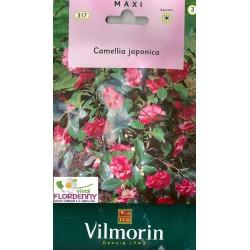 VILMORIN SEMI BANANO LINEA PIANTE PARTICOLARI fiori giardino orto pianta