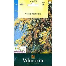 VILMORIN SEMI CAMELIA LINEA PIANTE PARTICOLARI fiori giardino orto pianta