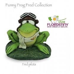 RANA NON VEDO LES ALPES ranocchia frog fantasy rospo rane stagno natura