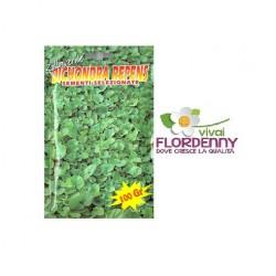 PRATO SEMI DICHONDRA REPENS BOTTOS 500g prati tappeto erboso semente erba semi giardino