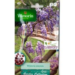 VILMORIN SEMI ALBIZIA LINEA PIANTE PARTICOLARI fiori giardino orto pianta
