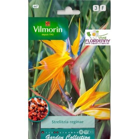 Vilmorin semi sterlizia linea piante particolari fiori for Vendita semi fiori