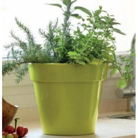 NICOLI VASO ZEUS GLOSS 40 vasi resina vaso arredamento giardino ter...