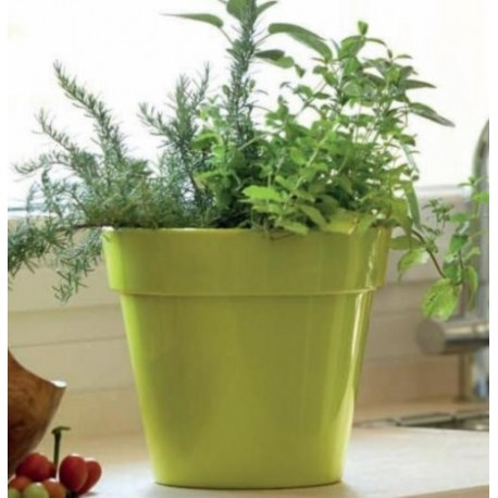 Nicoli vaso zeus gloss 50 vasi resina vaso arredamento for Vasi nicoli