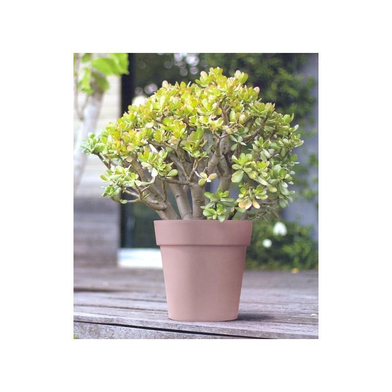Nicoli vaso arke 39 cm30 vasi vaso fioriere piante giardino for Vasi da arredo