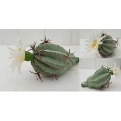 PIANTA GRASSA ARTIFICIALE ECHINOPSIS REAL TOUCH piante artificiali finto vetrina composizioni