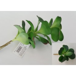 PIANTA GRASSA ARTIFICIALE CRASSULA PORTULACARIA SMALL REAL TOUCH