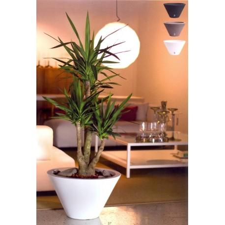 Nicoli vaso chiron 60 vasi resina vaso arredamento piante for Arredamento da terrazzo offerte