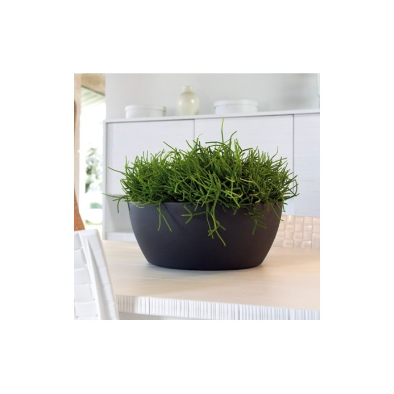 Nicoli ciotola thetis 40 vasi resina vaso arredamento for Vasi da arredo