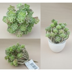 PIANTA GRASSA ARTIFICIALE SEDUM REAL TOUCH