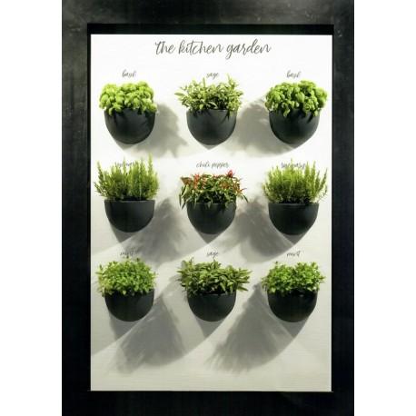 NICOLI GERLA CLIO 32 vasi resina vaso arredamento piante giardino t...