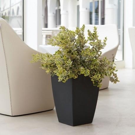 Nicoli vaso quadro logos 30x30 vasi resina vaso for Vasi da arredamento design